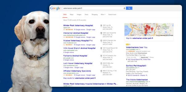 Cheshire Partners Veterinary Online Marketing